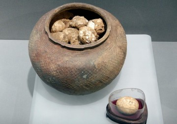A pot of ancient eggs is on display at the Nanjing Museum, Jan 7, 2017.
