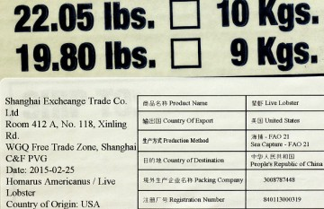 A box containing about 20 pounds of lobsters at Maine Coast in York, ME, is bound for Shanghai, China.