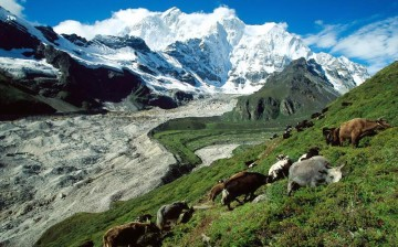 China is home to almost 15 percent of the glaciers in the world.