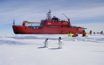 The Aurora Australis has been Australia's icebreaker since 1989.