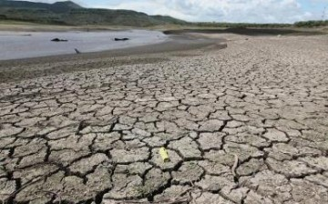 The rising global temperature due to El Niño has resulted in drought in many affected areas around the world.