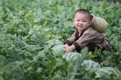Melon Baby is the son of a Sichuan Province farmer surnamed Zhang.
