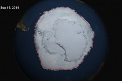 A satellite image of sea ice circling the Antarctic continent in September 2014, the Southern Hemisphere winter.