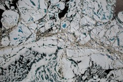Chunks of sea ice, melt ponds and open water are all seen in this image captured at an altitude of 1,500 feet by the NASA's Digital Mapping System instrument during an Operation IceBridge flight over the Chukchi Sea on Saturday, July 16, 2016.