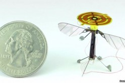 The RoboBee beside a small coin. The minuscule robot is expected to have a wide range of applications once it is made available.