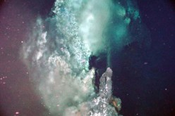 The last universal common ancestor of all life on Earth is a microbe that used to dwell near deep sea vents and underwater volcanoes.
