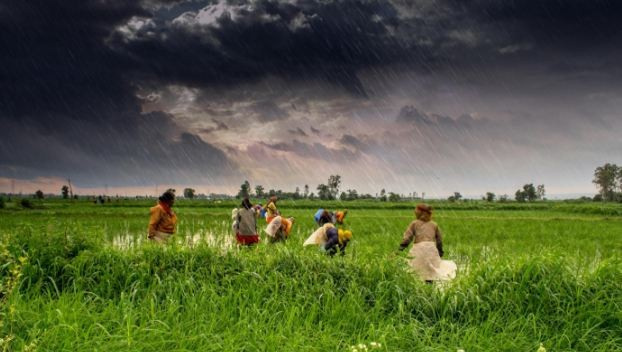 Monsoon rains in India.