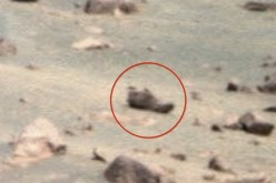 Someone allegedly left their shoe on Mars.