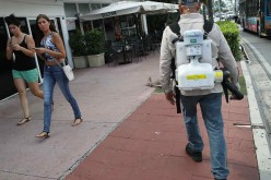 Miami Beach Sprays To Combat Zika Virus Carrying Mosquitoes