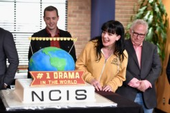 New main characters expected to inject energy to 'NCIS' season 14