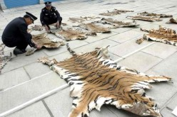 Animal rights violations are rampant in China.