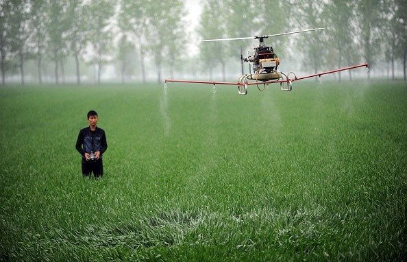 A man controls a drone spraying pesticides on crops on a farm in Bozhou in Anhui Province.