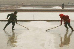 Chinese laborers work at a salt field on the outskirt of Weifang City on April 21, 2006, in Shandong Province of China.