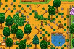 A player character cleans out the farming area in 'Stardew Valley.'