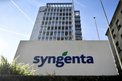 The logo of Swiss pesticide and seed company Syngenta is displayed in front of its headquarters in Basel.