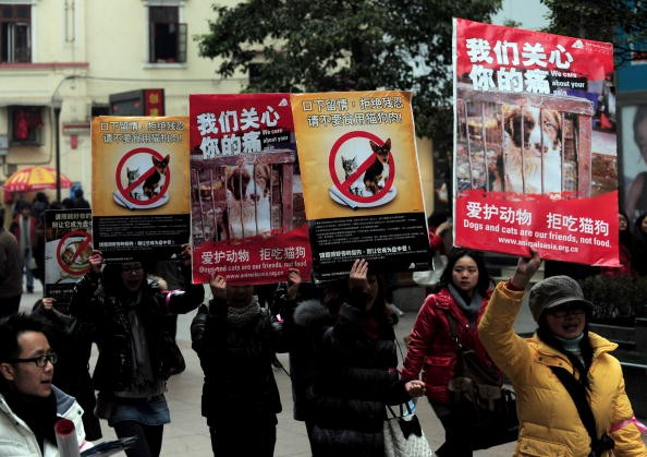 Chinese animal rights activists stage a march with posters calling for people to refrain from eating cats and dogs, in Wuhan, central China's Hubei Province.