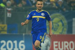 Hertha Berlin and Bosnia captain Vedad Ibisevic.