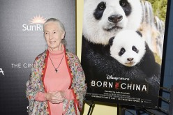 Disneynature With The Cinema Society Host The Premiere Of 'Born In China'