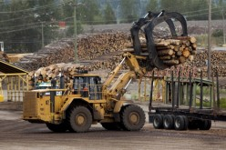 Canada's Lumber Industry