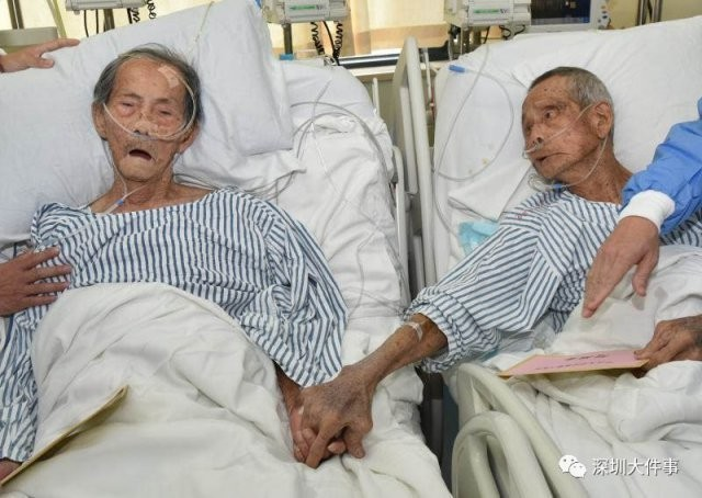 Zhuang Shuifa, 88, and Lin Shuishou, 90, were comrades in arms during the Second World War.