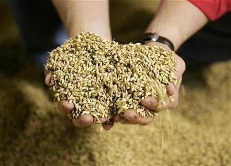 As a result of population growth and urbanization, the country will need to provide 700 million tons of grain by 2020.