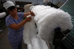 Xinjiang cotton producers are opposing moves by the government to end the stockpiling of cotton that results in inflated prices.