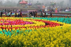 Colorful pinwheels are seen at a park in Luoyang City, central China's Henan Province, April 4, 2015.