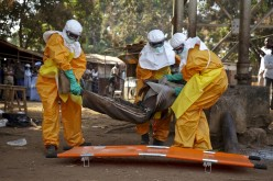 Reforms planned at WHO to tackel Ebola like crisis in future