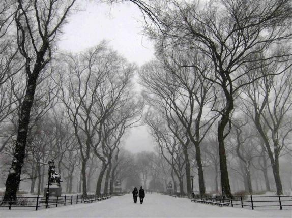 wintertime in NYC's Central Park