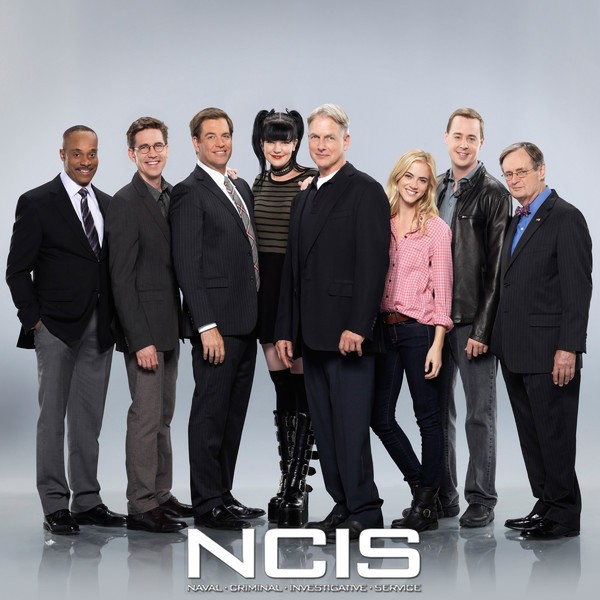 "The ""NCIS"" TV series was created by Donald P. Bellisario and Don McGill."