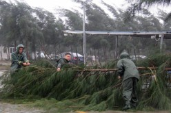People try to remove a fallen tree branch from a street during Typhoon Mujigae in Maoming, Guangdong Province, Oct. 4, 2015.