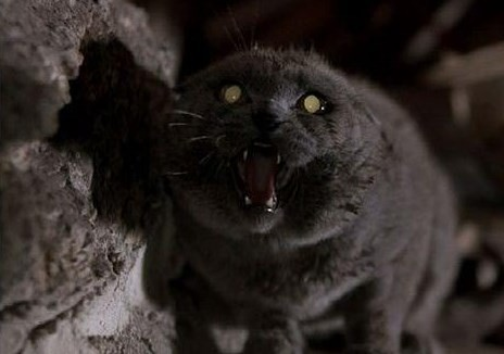 """Pet Sematary"" had its cinematic adaptation by helmed by director Mary Lambert in 1989."