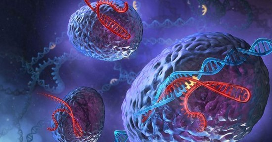 CRISPR-Cas9 allows scientists to create genetic changes in the cells.