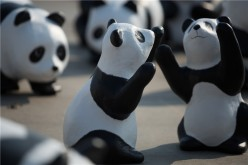 The exhibition by French artist Paulo Grangeon arrives in Bangkok after they have been flown around the world to spread the message about environmental preservation. 1,600 represents the number of pandas left in the wild.